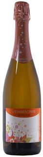 Complices de Loire L'Evanescente 750ml
